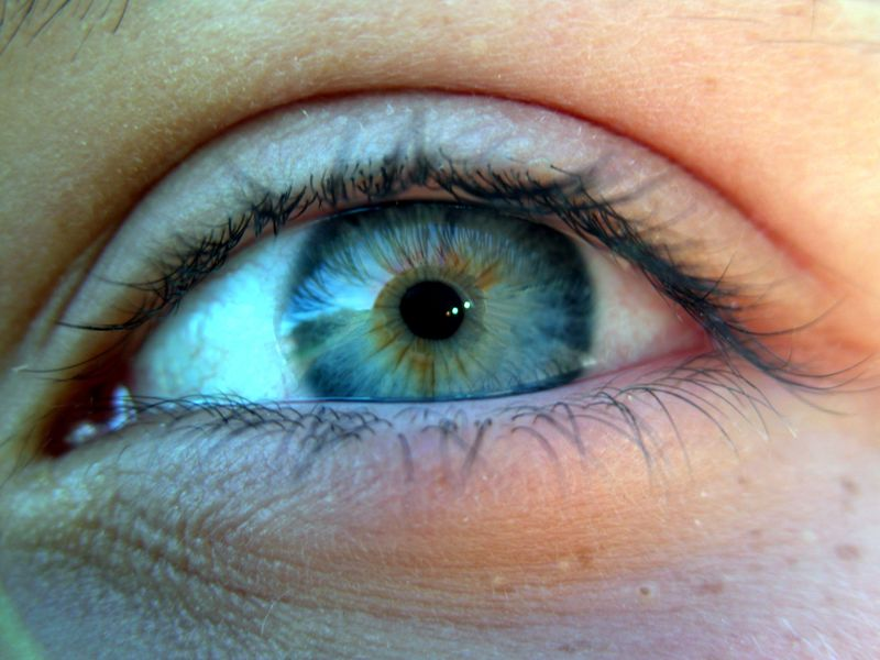 Grun Gelb Blaue Augen Hylen Maddawards Com